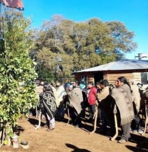 Nación Mapuche. Violenta detención de werken de la comunidad Boyen mapu, comuna de Victoria