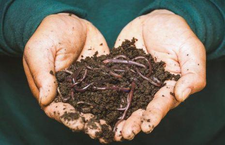Agroecología. «Al compostar estamos devolviendo suelo a la Tierra»