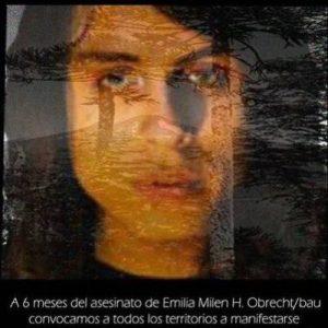 Nación Mapuche.  Agitación multiforme desde todos los territorios por Emilia Bau, Macarena Valdés y todes les asesinades y violentades por luchar en defensa de la tierra