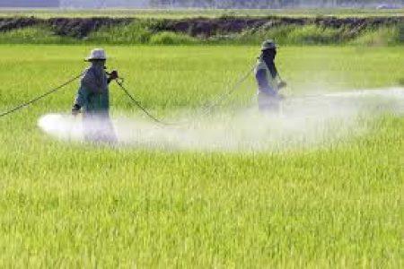 Argentina. Un video que describe «el costo humano de los Agrotóxicos»: duro como la realidad misma de los pueblos azotados por el glifosato