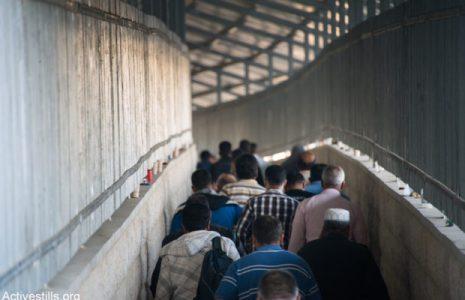 """Palestina. Yuval Harari: """"La solución de tres clases sociales"""""""