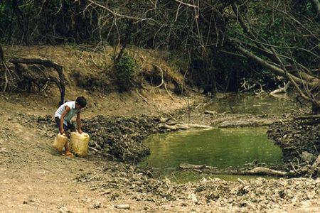 Pueblos originarios. Los qom en el Chaco: sin agua para vivir