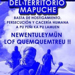 Nación Mapuche. Lucha autónoma contra el capital