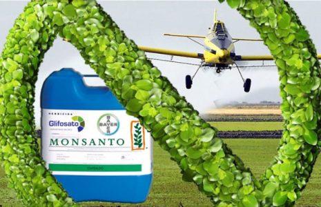 Argentina. El Gobierno incentiva el uso de agrotóxicos con una