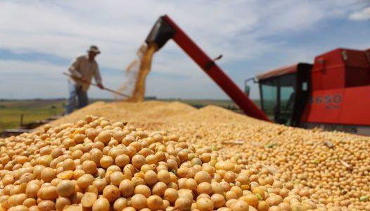 Argentina. Los grandes productores sojeros se lanzan contra el gobierno