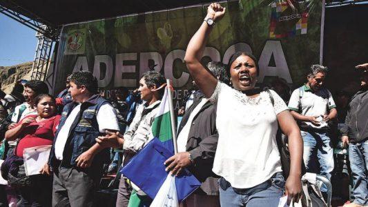 Aumentan la campaña por la libertad de Elena Flores, líder afroboliviana del sindicato cocalero – La otra Andalucía