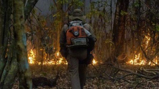 Brasil. La lucha contra el fuego en el Pantanal de