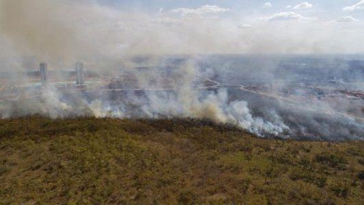 Brasil. Se quema el país de Bolsonaro y de sus