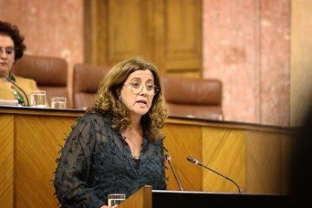 Ciudadanos responsabiliza a familias y trabajadores de una vuelta el cole segura – La otra Andalucía
