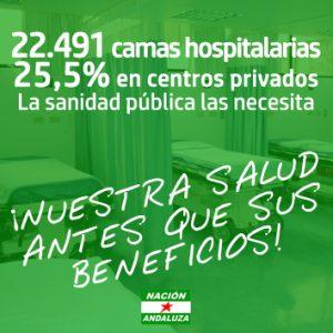 Comunicado de Nación Andaluza ante la crisis sanitaria por el Covid-19 ¡La salud del Pueblo Andaluz antes que sus beneficios! – La otra Andalucía