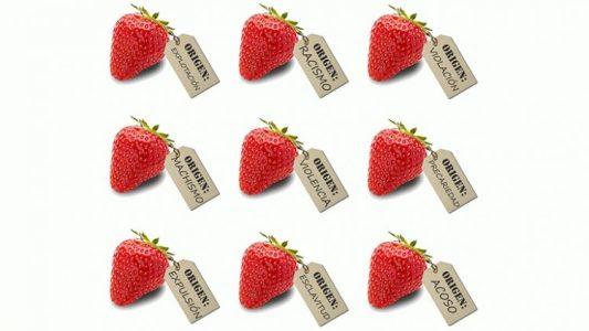 El coste de la fresa. Esclavas del siglo XXI – La otra Andalucía