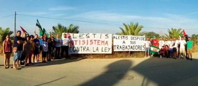 Entrevista sobre la lucha de los despedidos de Alestis (vídeo) – La otra Andalucía