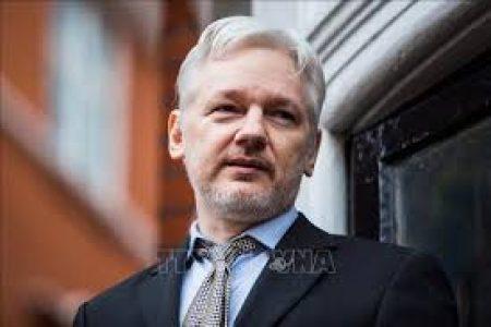 Internacional. Diario del Juicio a Julian Assange