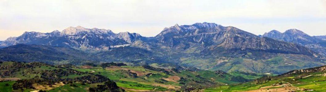 La Junta (PP-C's-Vox) impone como presidente del Parque Natural Sierra de Grazalema a un dirigente de ASAJA – La otra Andalucía