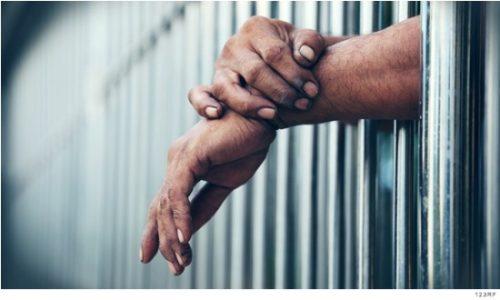 México. Ley de Amnistía, un acto humanitario y de justicia: