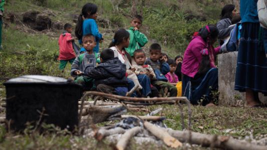 México. Otorgan amparo a tsotsiles víctimas desplazamiento forzado en Chiapas