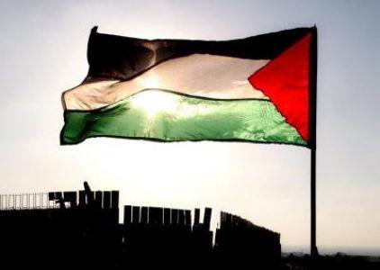 Palestina: A 73 años de la partición ¿Quién confisca nuestras voces? (vídeo)
