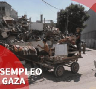 Palestina. La lucha por ganarse la vida en Gaza comienza