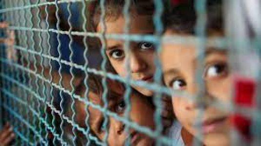 Palestina. ONU: más de 52.000 palestinos han sido desplazados en