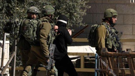 Palestina. Fuerzas de ocupación israelíes llevan a cabo campaña de