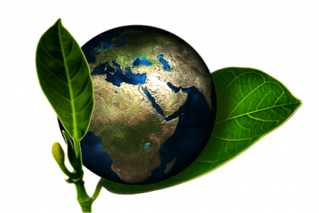 Perú. La conciencia ecológica superará a la sociedad alienigenizada