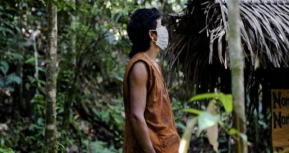 Perú.La amazonía peruana: la última renta estratégica post COVID-19