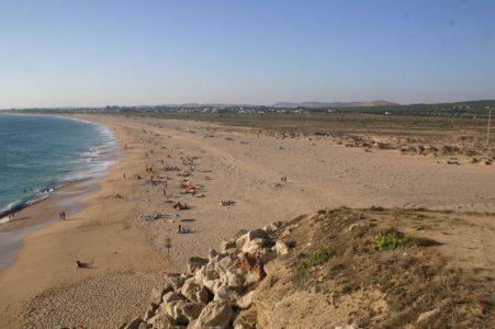 Piden anular el informe ambiental favorable a la urbanización del Pinar de Barbate y de Trafalgar – La otra Andalucía