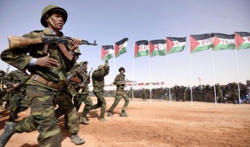 Sáhara Occidental: Se intensifica la ofensiva del Ejército de Liberación Saharaui