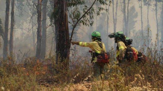 Sierra de Huelva: Continúa ardiendo Almonaster en el incendio más grave de todo el verano
