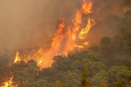 Un trabajador pierde la vida mientras extinguía el incendio de Sierra Bermeja